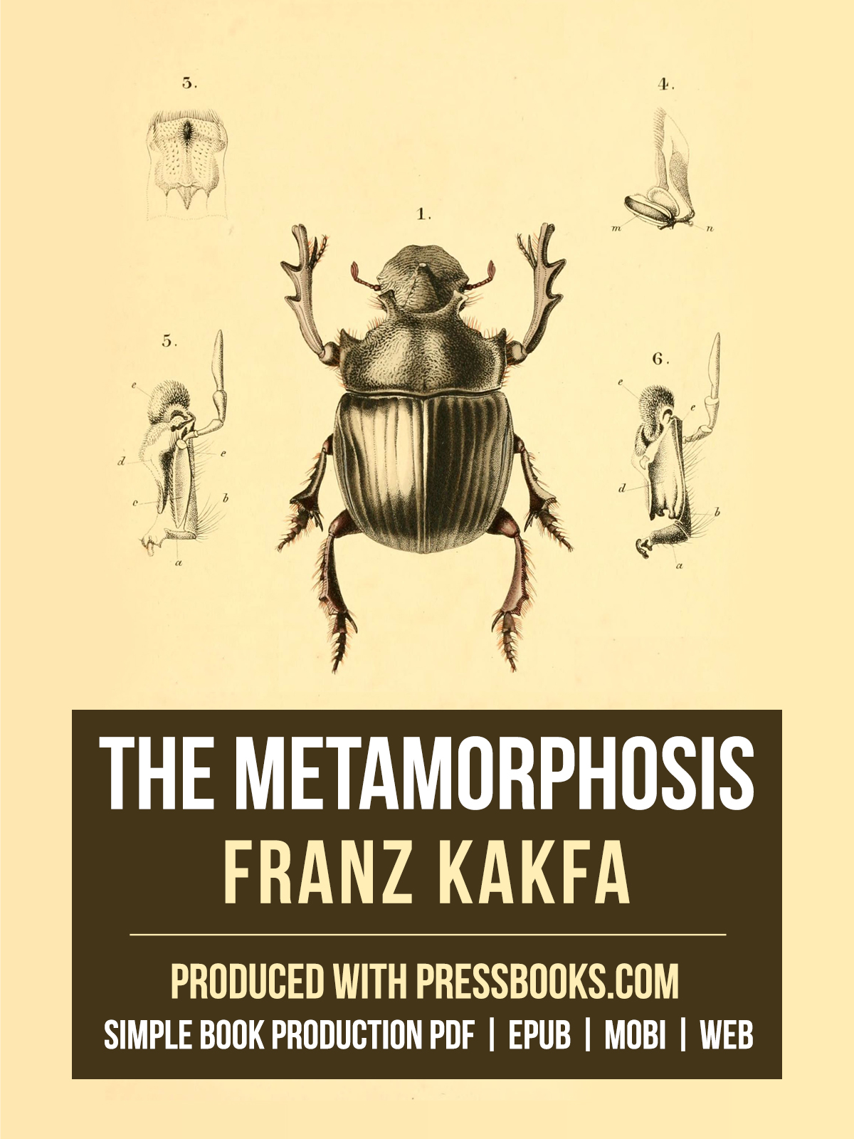 kafka the transformation What is the deeper meaning of franz kafka's the gregor himself appeared only mildly perturbed by his transformation why has franz kafka's the metamorphosis.